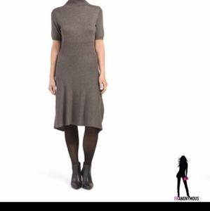 Taupe Turtleneck Sweater Dress